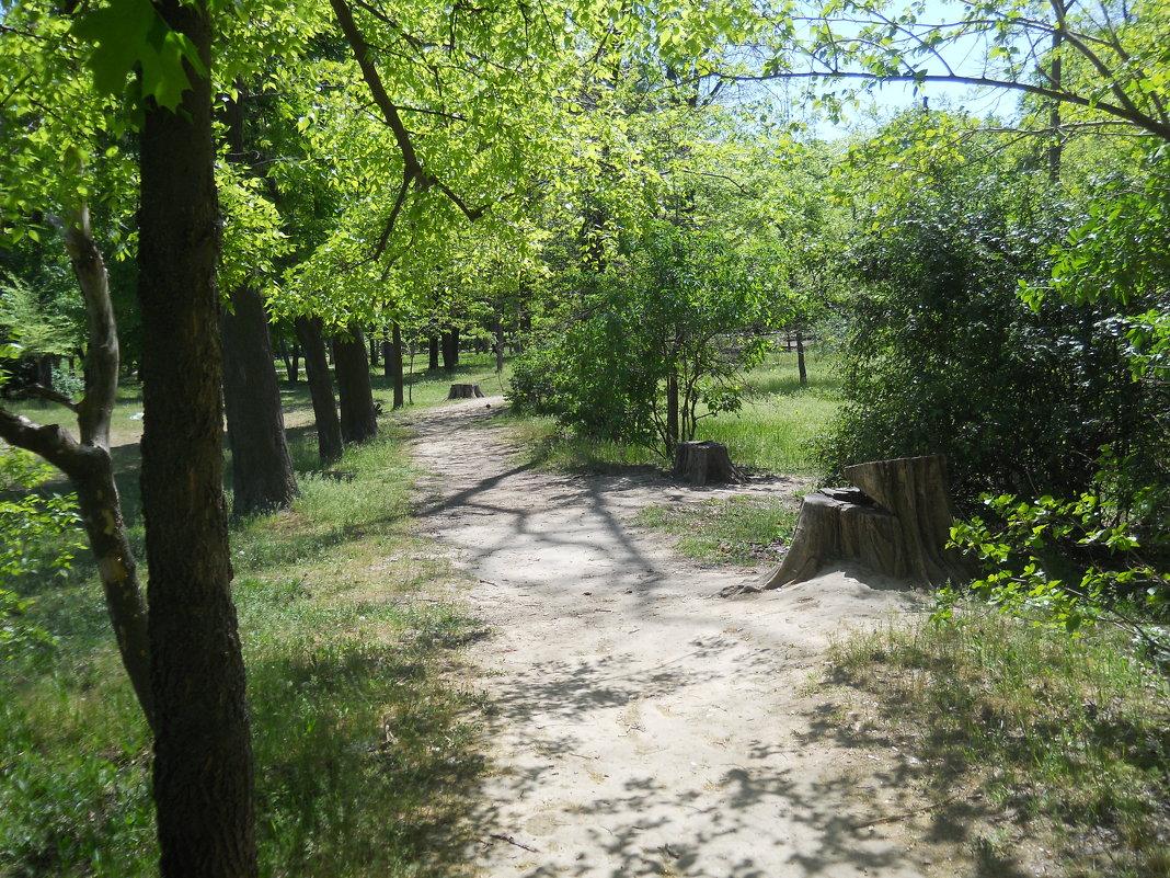 По весенней тропинке парка - Галина