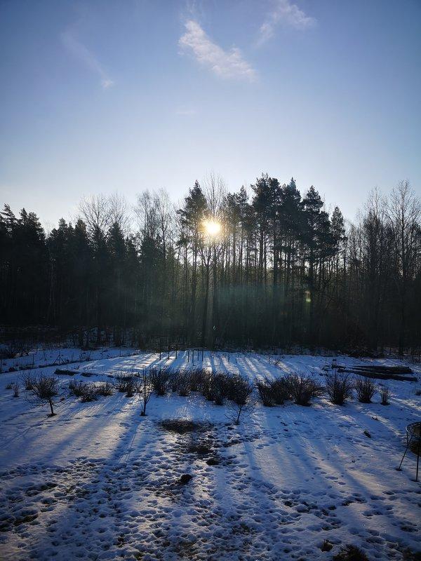 Утро февральское - Инга Энгель