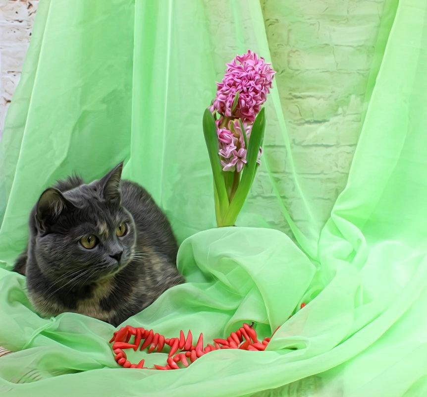 Кошка весенняя - Наталья Стальмакова
