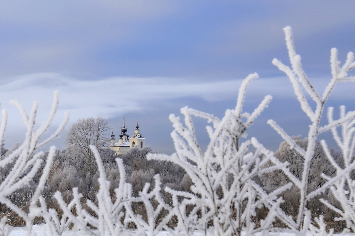 Зима в Подмосковье - Светлана Карнаух