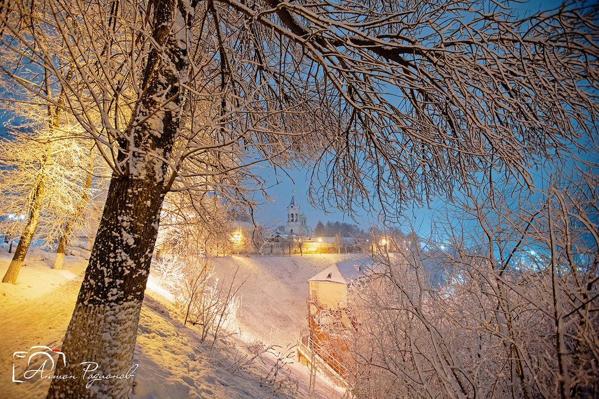 Зимняя весна - Антон Родионов