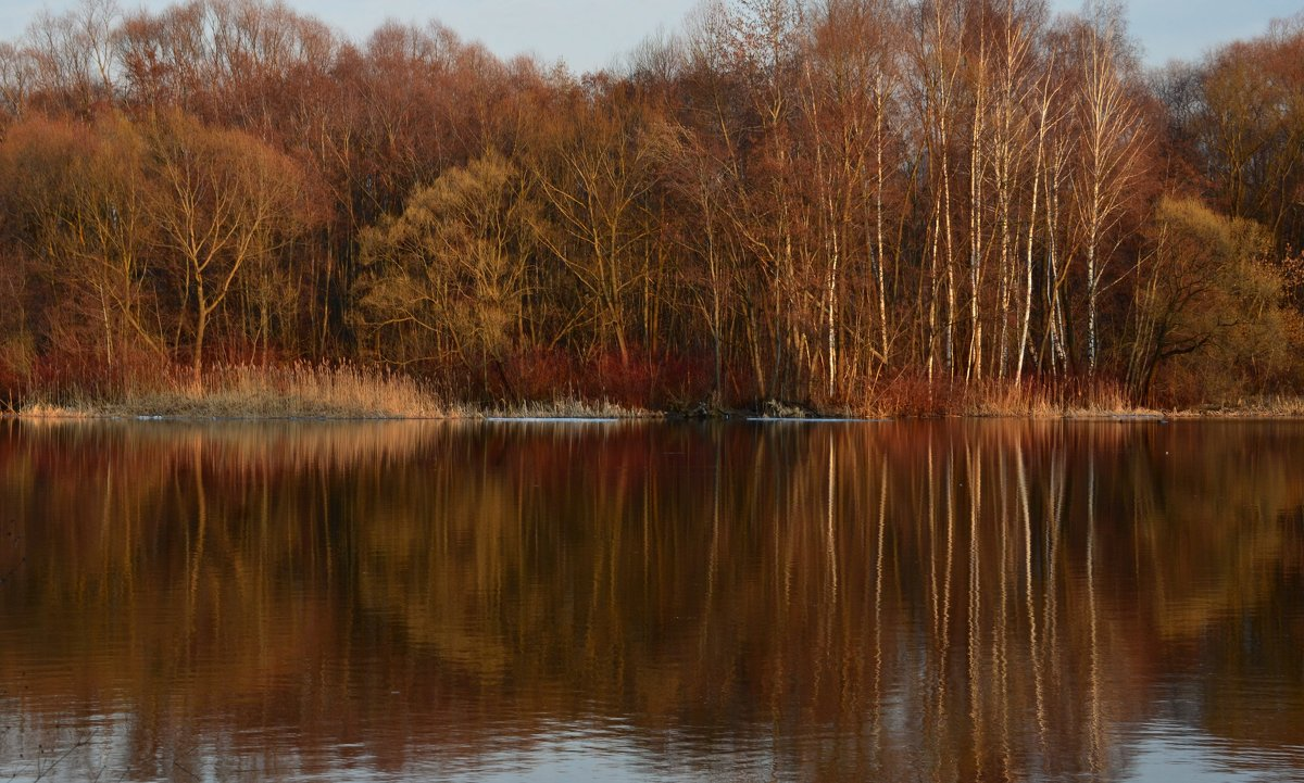 Апрель. Отражение весны в зеркале пруда...