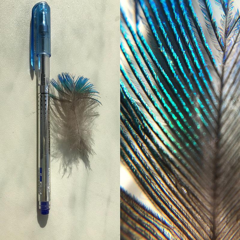 Красота в миниатюре - Светлана Карнаух