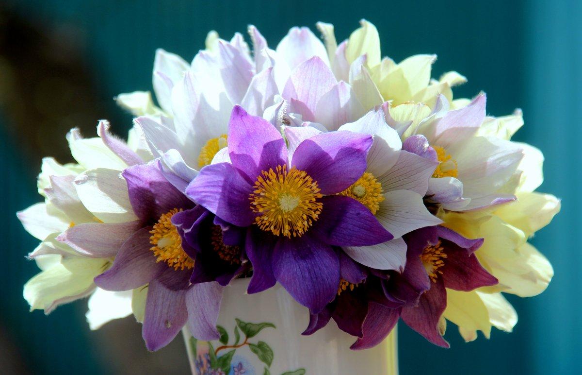 Весенние цветы - Владимир Помазан