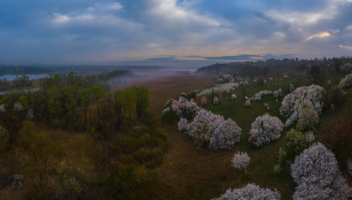 Весенний, туманный рассвет - Фёдор. Лашков
