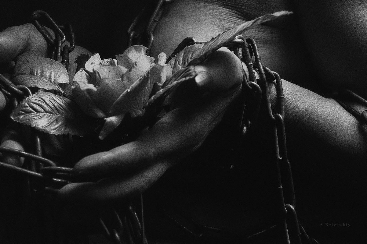 girl, body, hand, flower, chains, black and white, studio, art,  I would be grateful for the donatio - krivitskiy Кривицкий