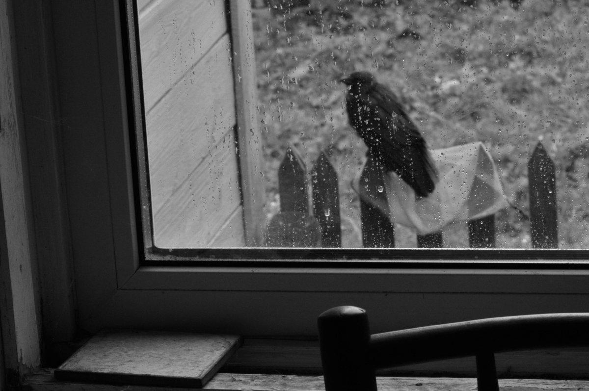 Про дождь-2 - Екатерина