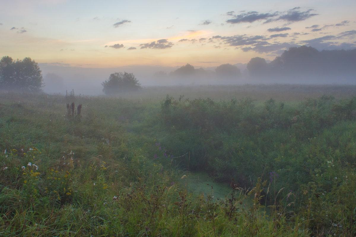В рассветных пойменных туманах... - Igor Andreev