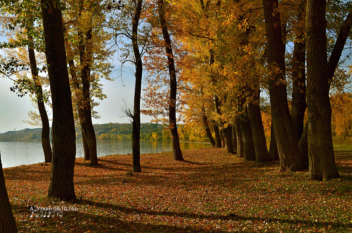 Осень - Анатолий