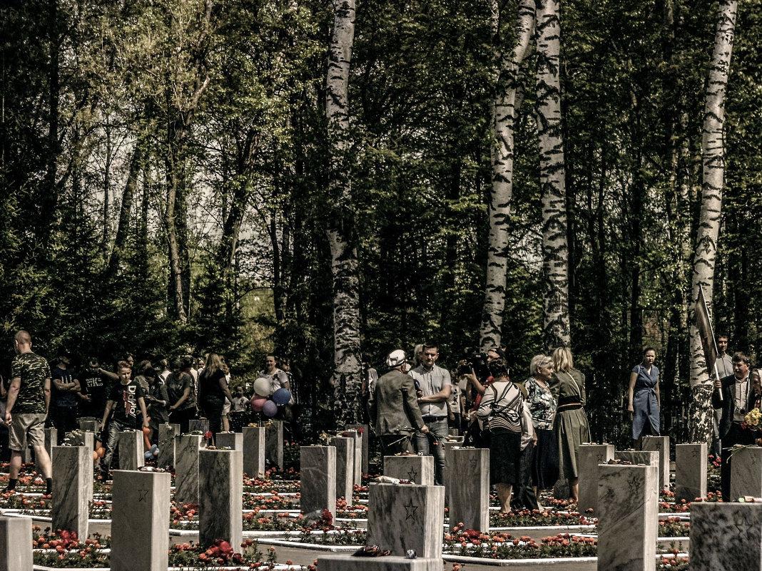 9 мая. мемориальное кладбище. - Юлия Денискина