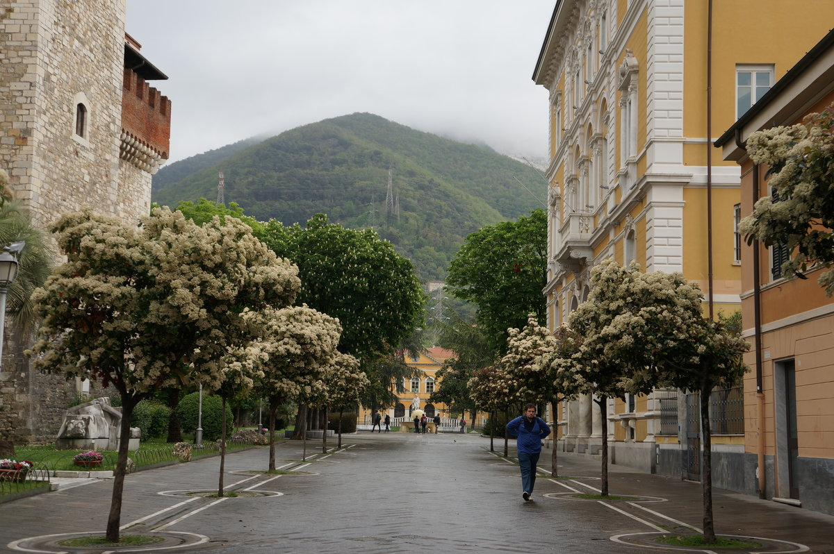 Nella sitta di Carrara ... - Алёна Савина