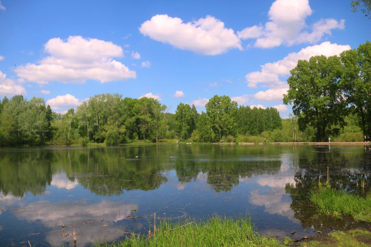 На озере - владимир тимошенко