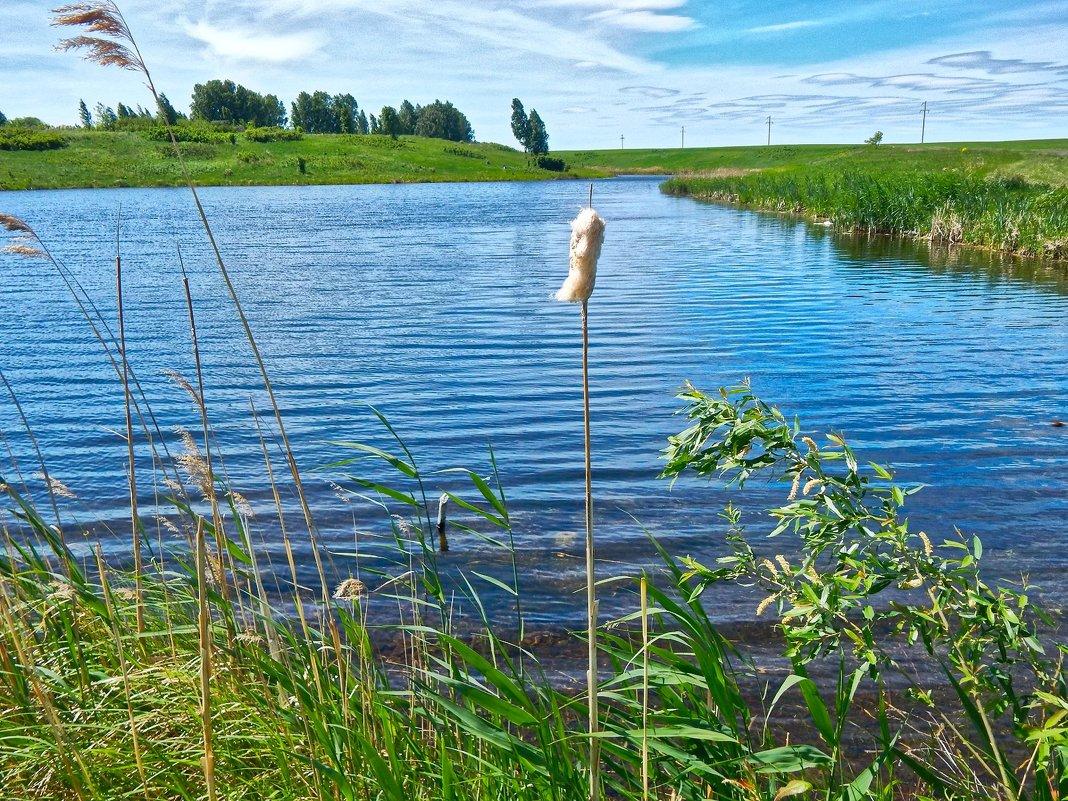 Гляжу в озера синие ... ) - Елена Хайдукова  ( Elena Fly )