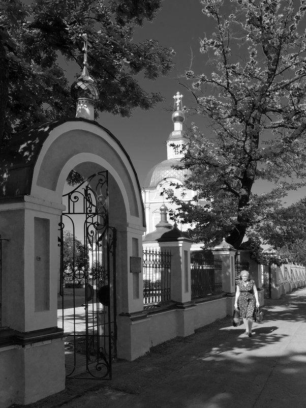 Посадский монохром - Фёдор Бачков