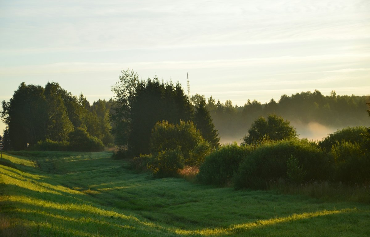 Утро туманное - demyanikita