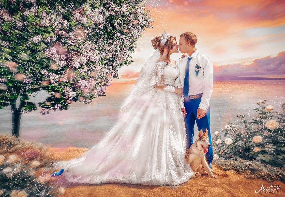 Свадьба Натальи и Андрея - Андрей Молчанов