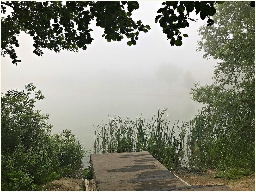 Туман....туман! - Валерия Комова