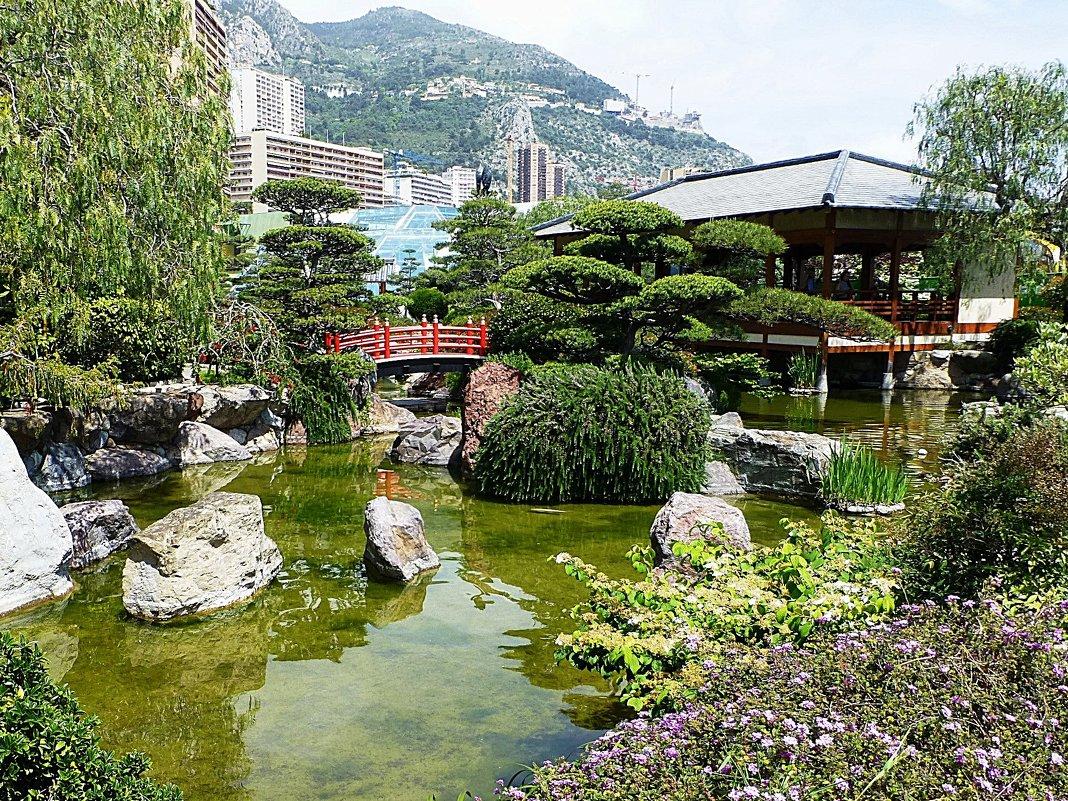 Японский сад в Монте-Карло, Монако - Лидия Бусурина
