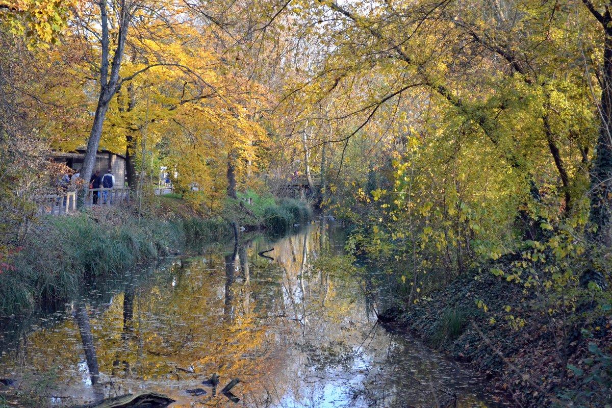 Осень в пражском зоопарке - Ольга
