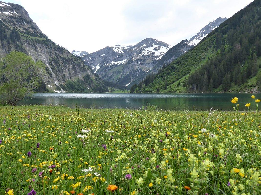...и опять гладь озерная,и опять выси гор...и цветов разнотравье...по душам разговор... - Olga