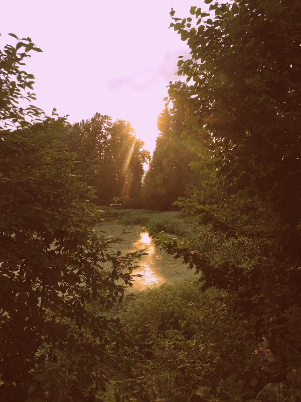Отражение солнца - marmorozov Морозова