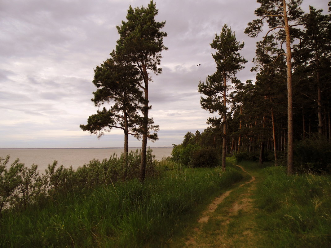 На берегу. - Мила Бовкун