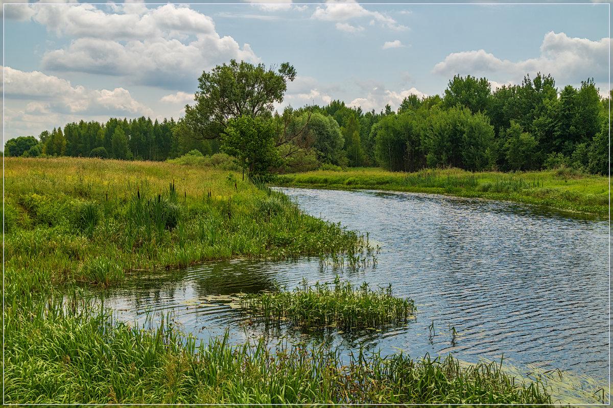 Жара, июнь 6 ...... - Андрей Дворников