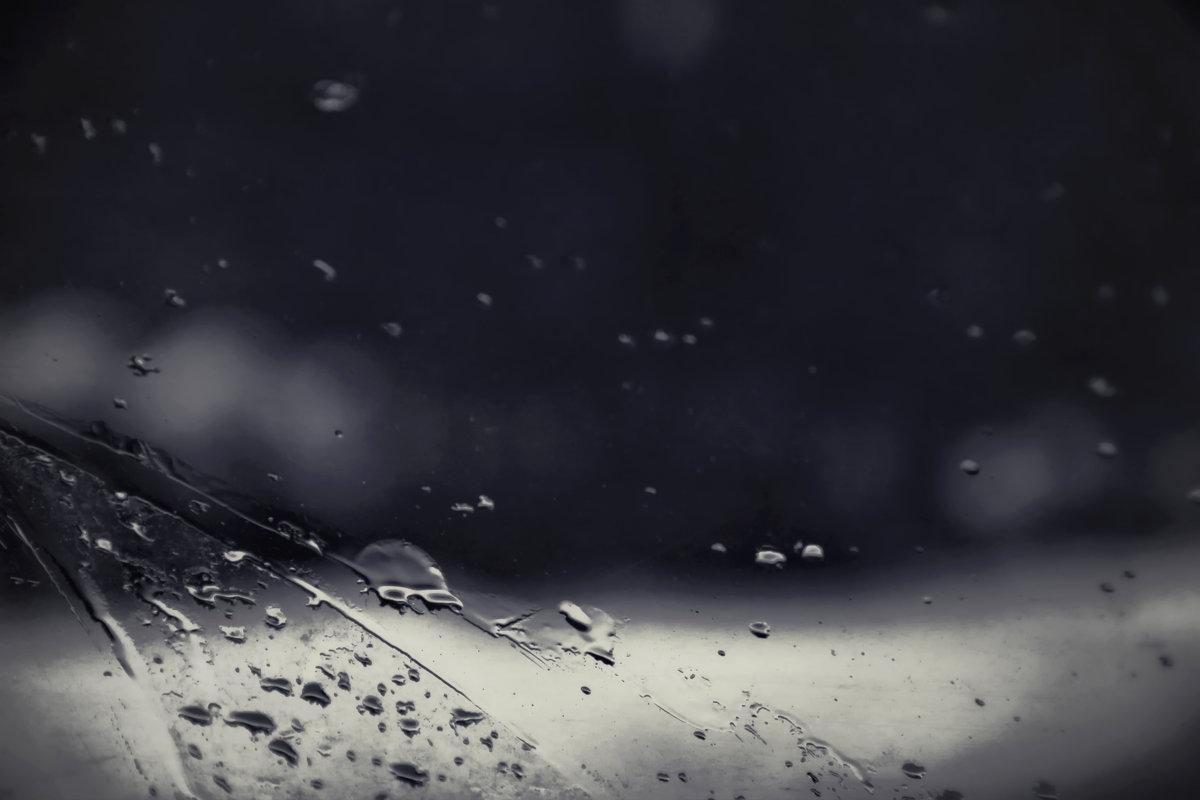 Брызги ночи - Cat Loom