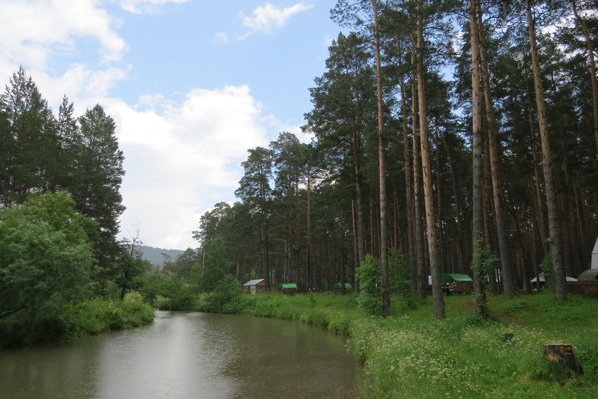 Лесная река - Вера Щукина