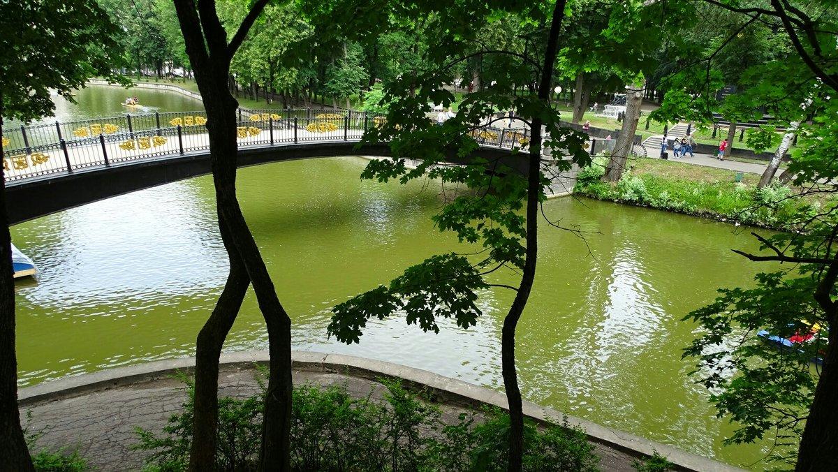 В городском саду - Милешкин Владимир Алексеевич