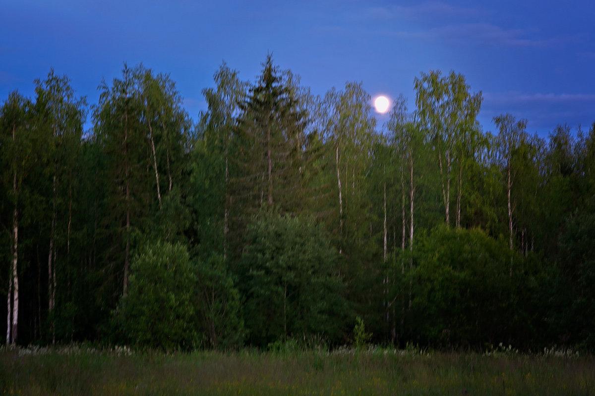 Восход луны - Александр Смольников