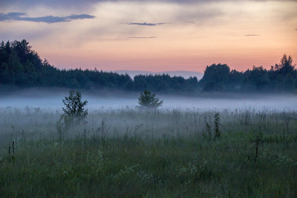 туманный вечер - оксана