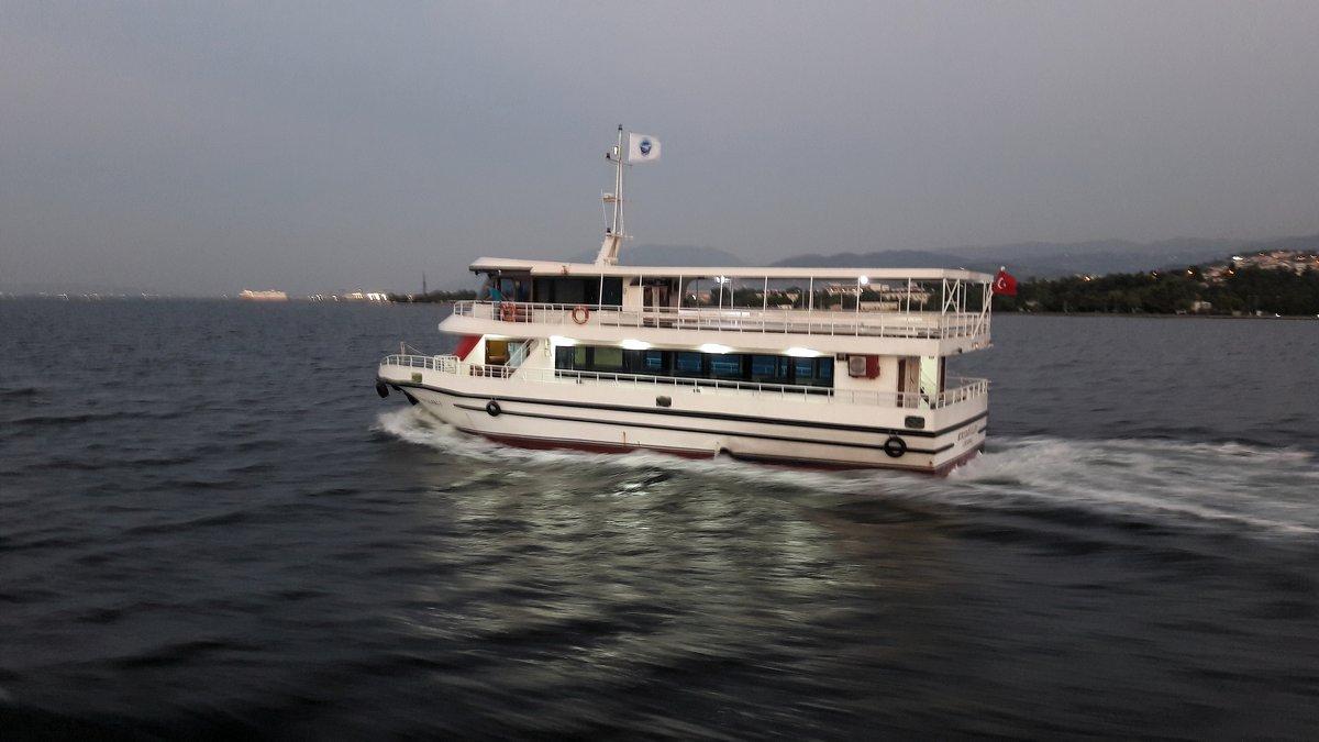 морской трамвай - веселов михаил