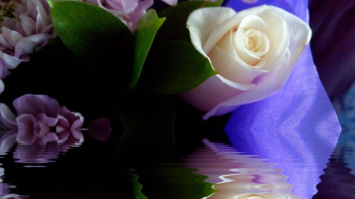 flowers composition - Елена Елена