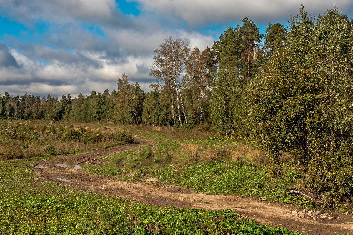 Вдоль леса по разбитой дороге - Валерий Иванович