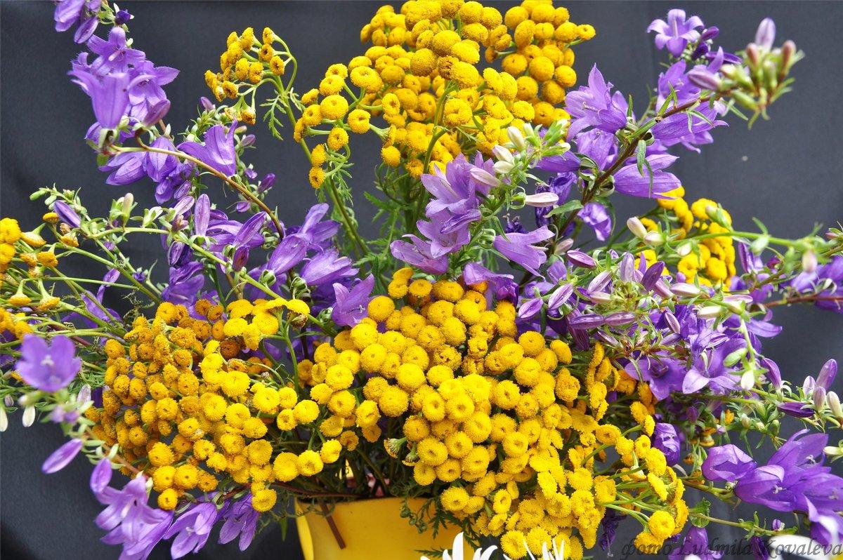 Дачные цветы - Людмила Ковалева