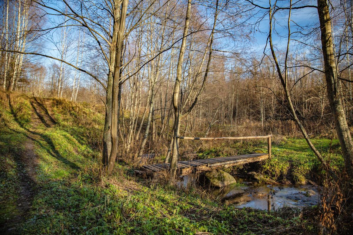 Лесной мостик - Владимир