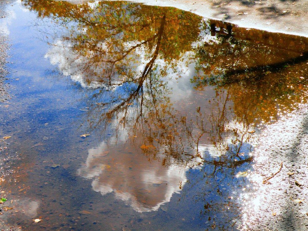 Осенние отражения... - Андрей Головкин