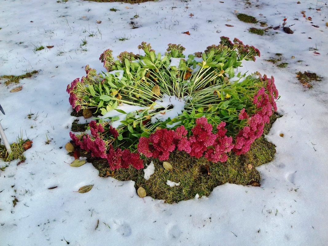 снег уложил цветы - Владимир