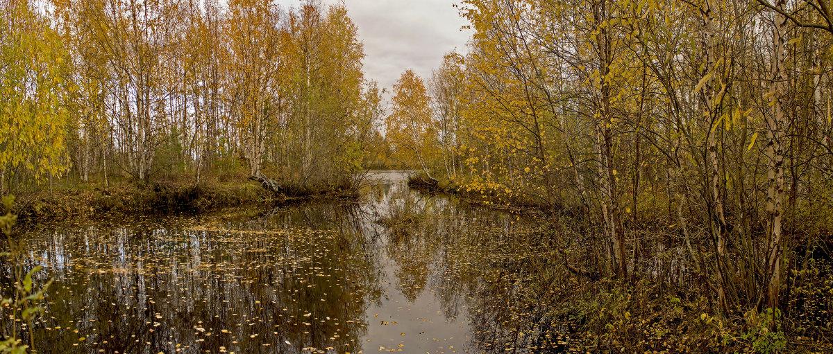 Золотая осень - Svetlana Pavlovskaya