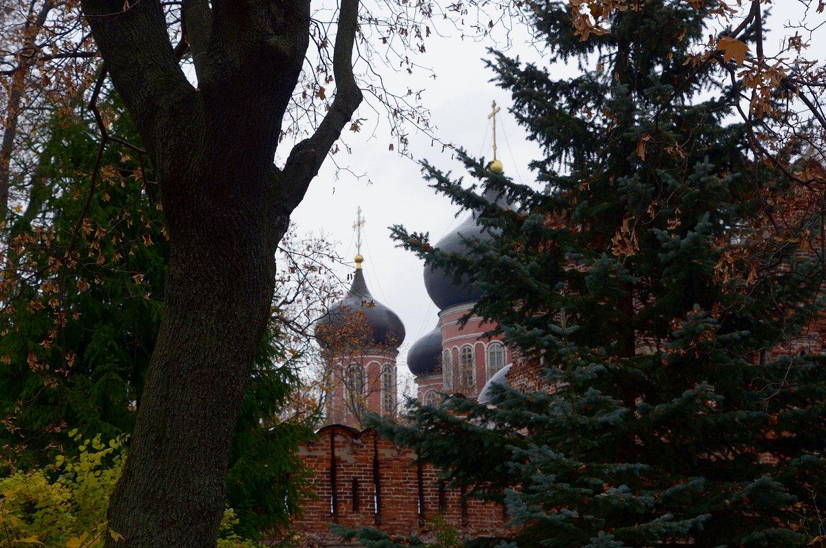 Донской монастырь. - Oleg4618 Шутченко