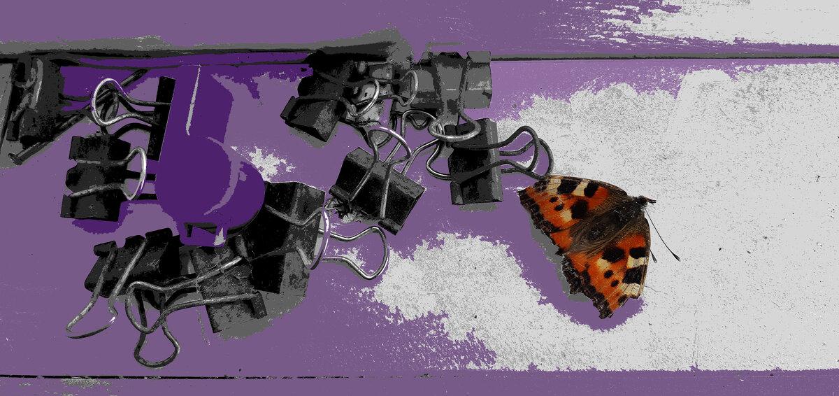 натюрморт с мёртвой бабочкой - Павел Самарович