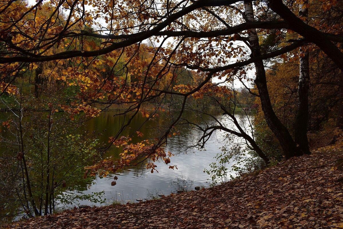 Осенний пейзаж - dindin