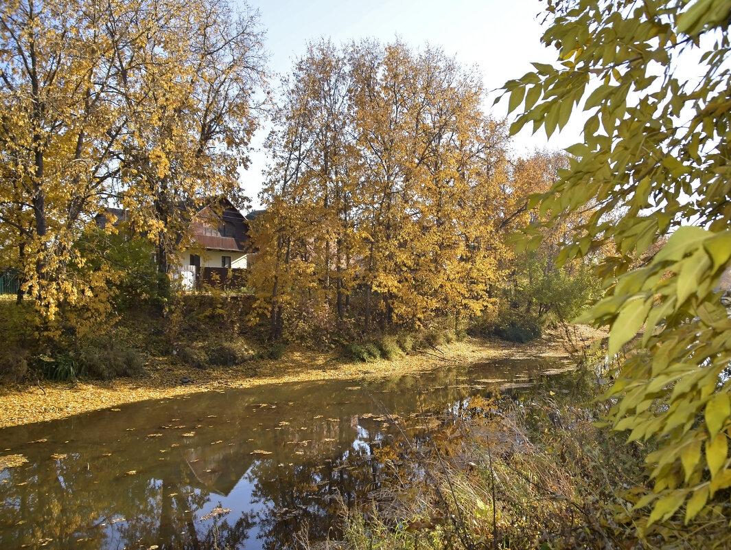 Домик у реки - Нина Синица