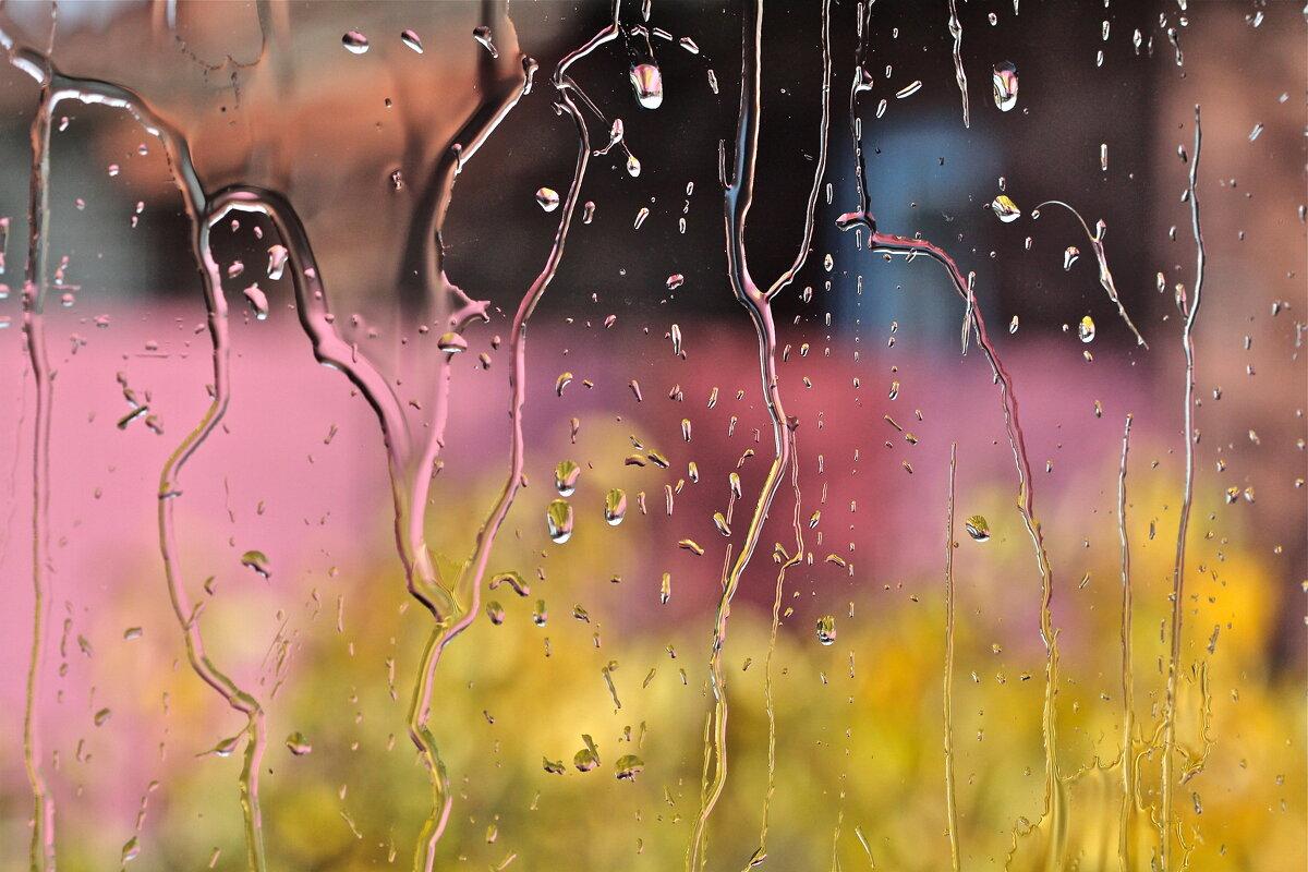 дождь - НАТАЛЬЯ