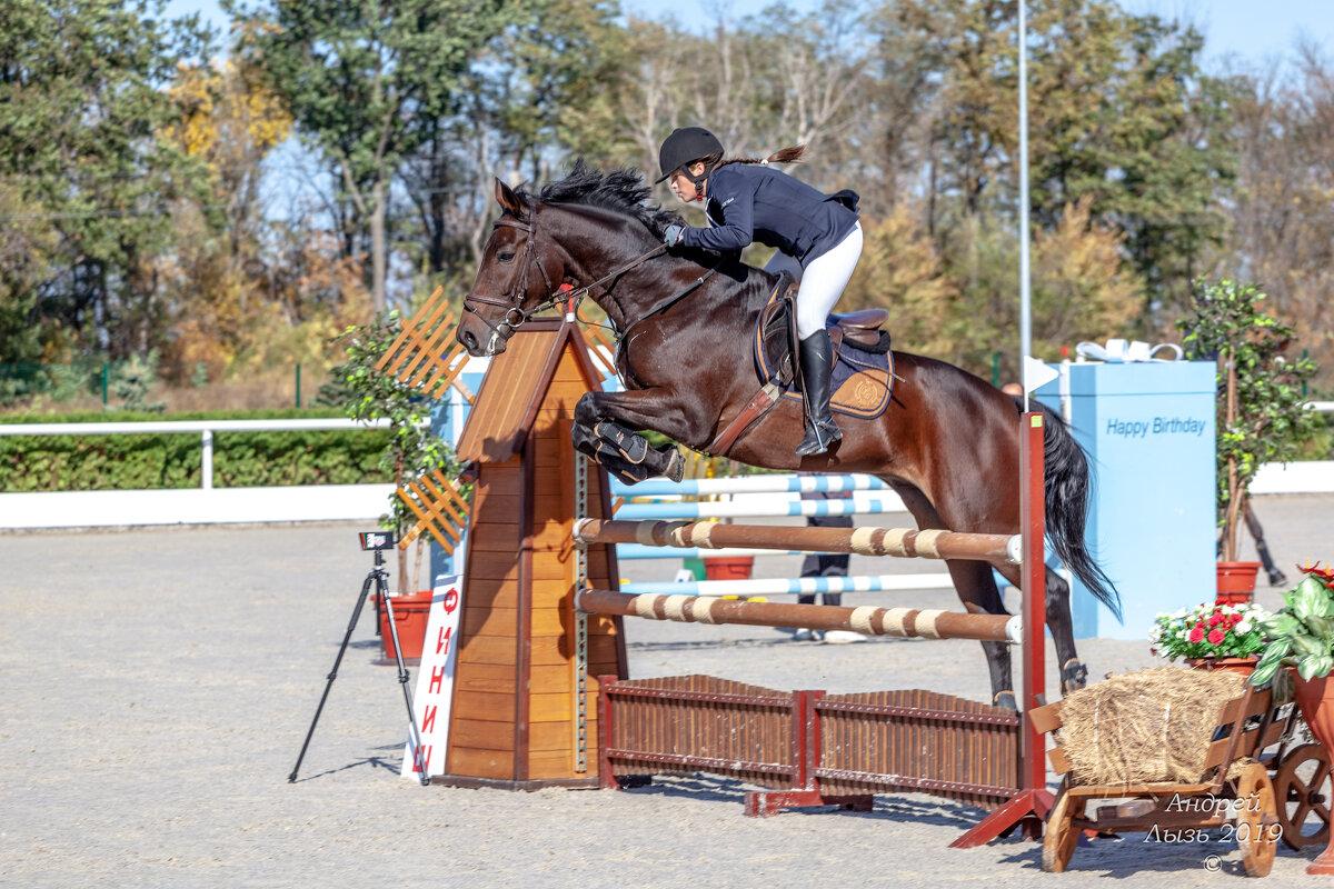 Кубок КСК Golden Horse 2019-10-13 - Андрей Lyz