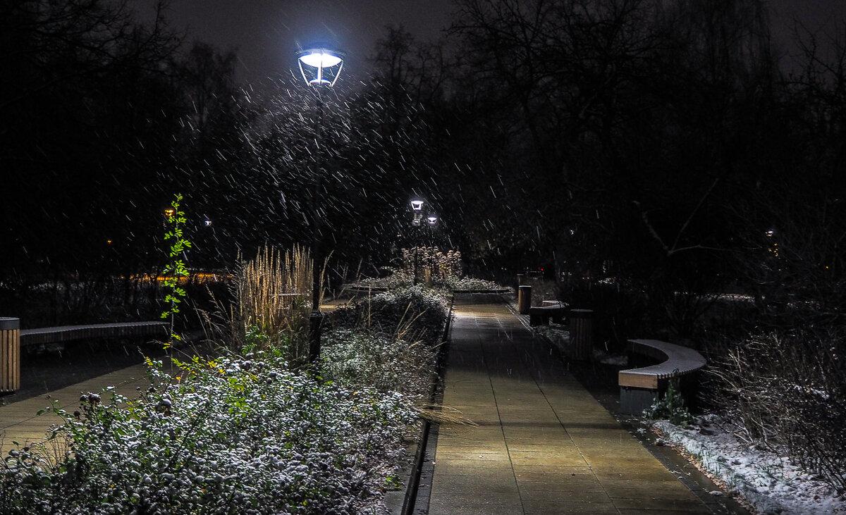 Прогулки в Вечернем Парке - юрий поляков
