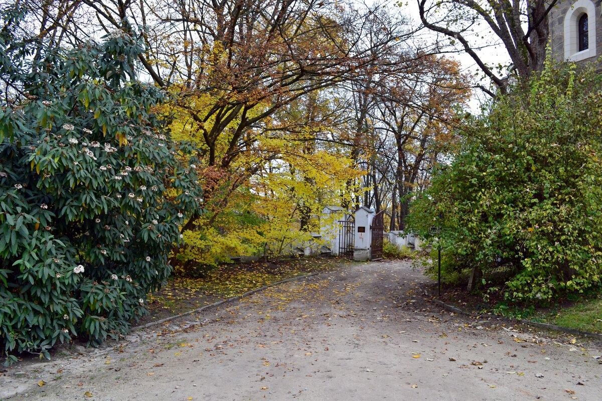 Осень у замка Глубока - Ольга