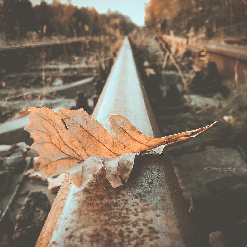 Осень вокруг - Игорь Чичиль