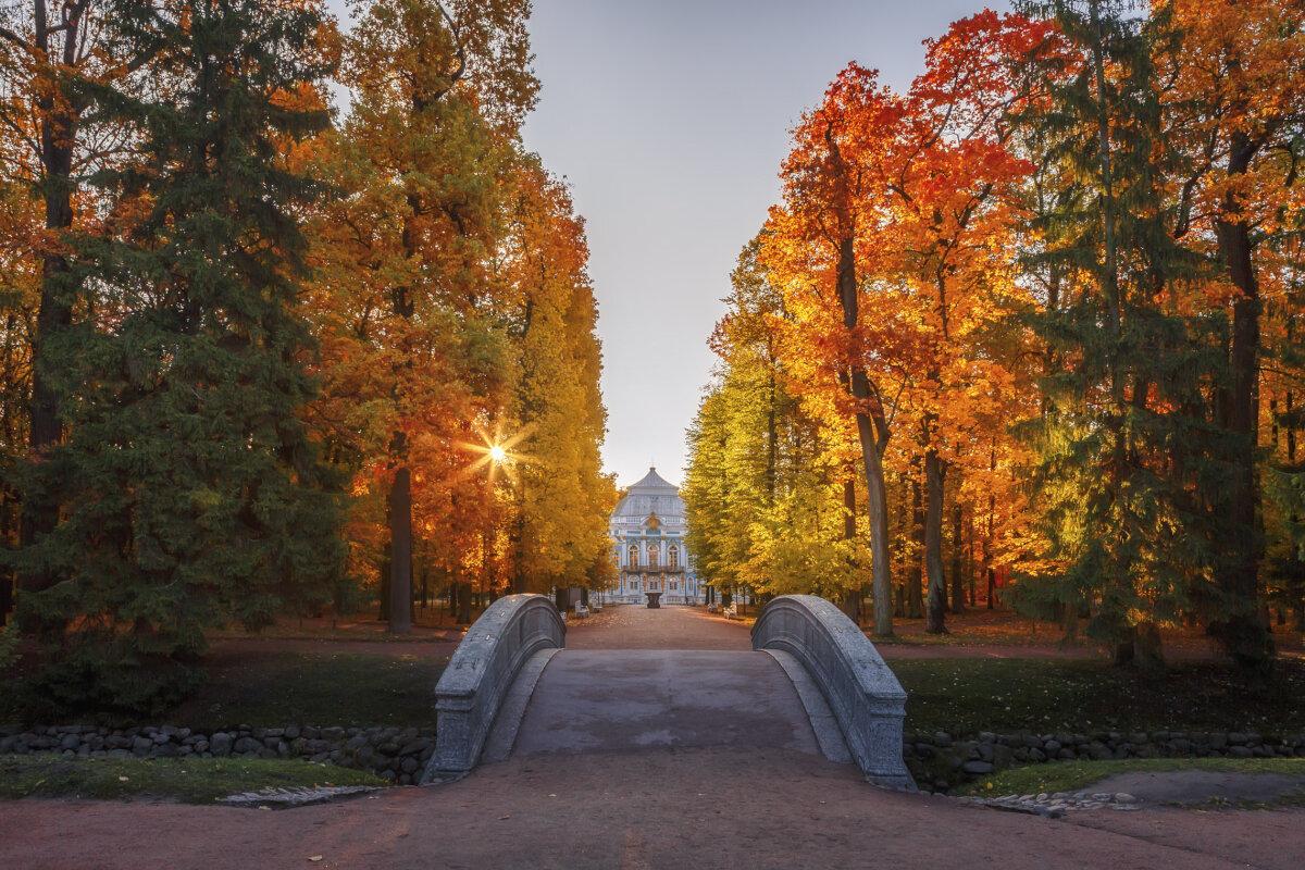 Царское Село - Владимир Колесников